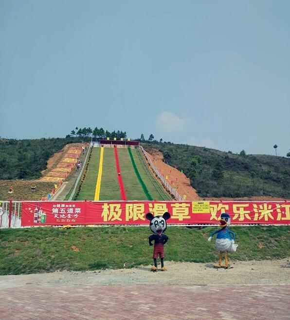 纵情美丽衡东 湖南首家生态式滑草游乐园开园-衡阳