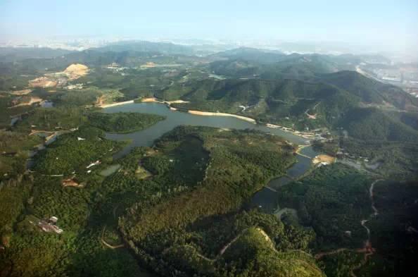 位于凤岗镇的碧湖森林公园是一个主题公园,也是一座半自然原生态休闲