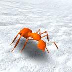 奔跑的蚂蚁