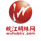 皖江明珠网