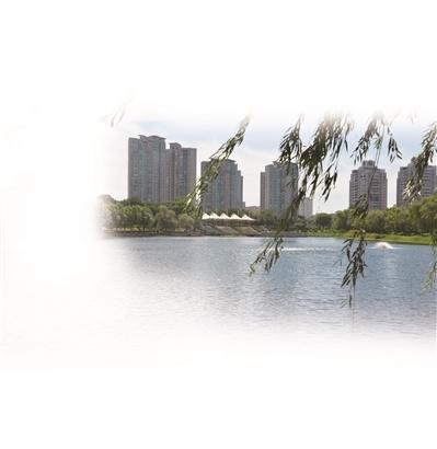 南京创建江苏省优秀管理城市,提升居民家门口的环境秩序