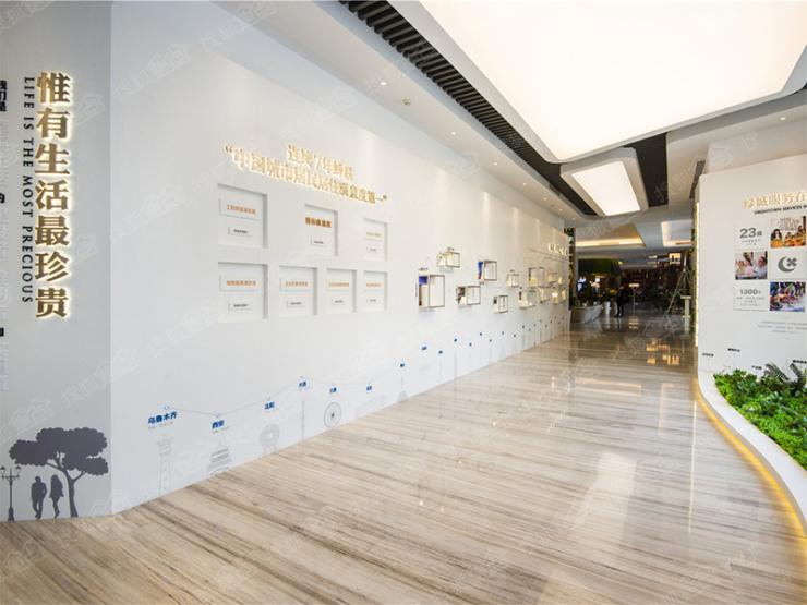对话庞旋:千亿绿城加速布局石家庄 2018打造爆款品质背书