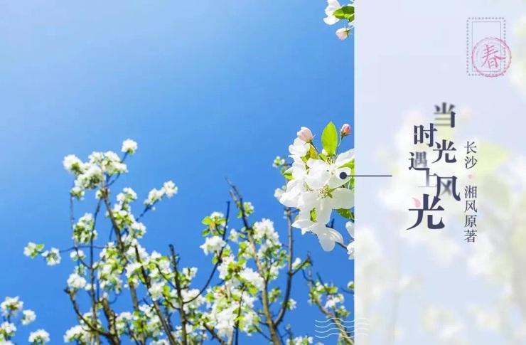 用一座四季园林,装下你的幸福生活。