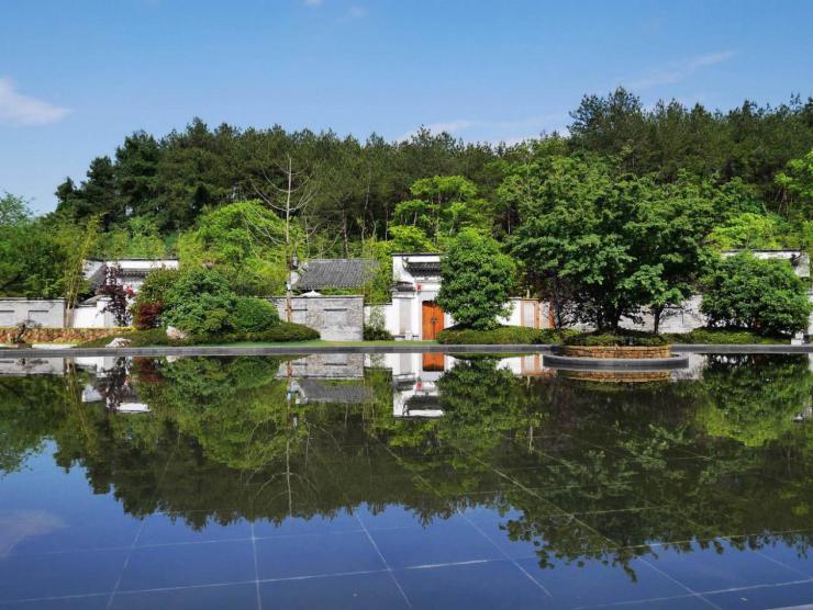 冯唐的院子,杨丽萍的宅子,就是我理想的房子