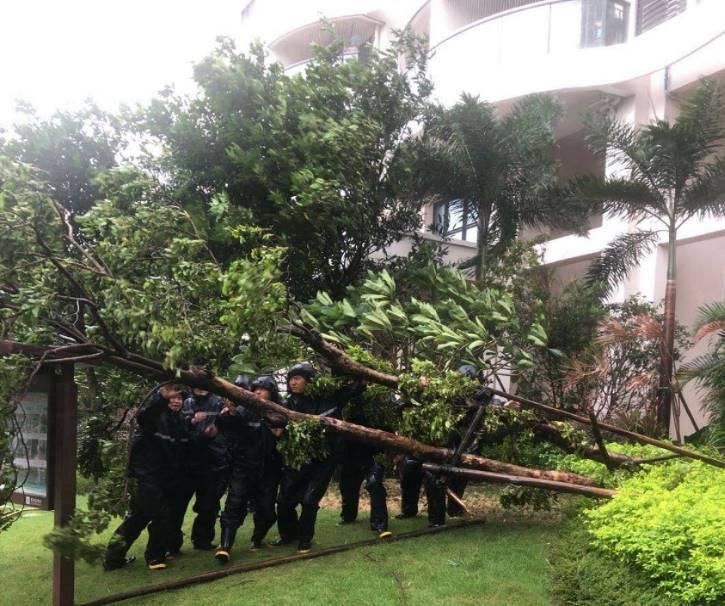 佳兆业物业集团(深圳)公司全面开展台风防范工作