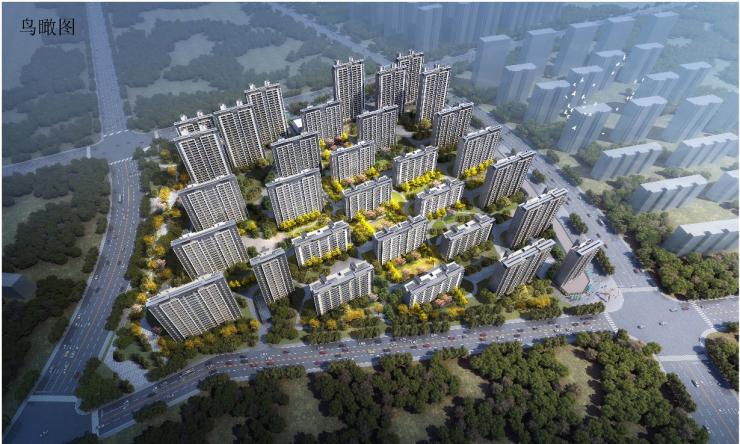 2020年城南地王新项目规划出炉,快来围观!