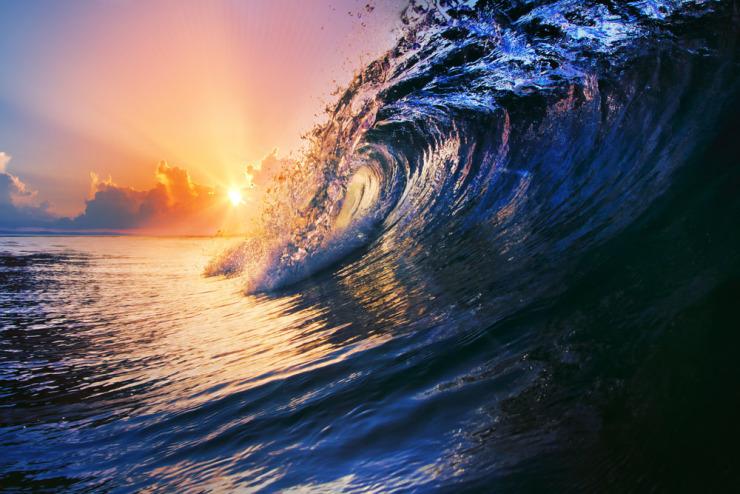 融创海逸长洲 |全球度假IP云集,一场海盐全新时代的澎湃狂澜