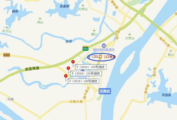 11月22宗地出让搅热武汉市场 明日大汉阳板块将出5宅地