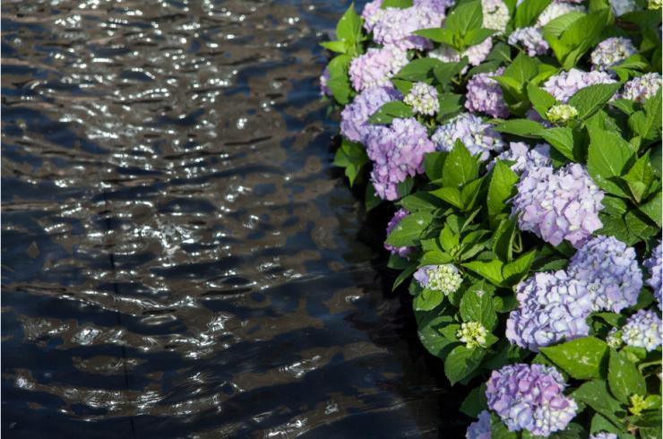 西安龙湖·紫宸丨极致园林,大美天成