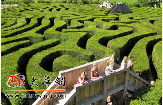 礐石风景区首个主题植物绿野迷宫将开放
