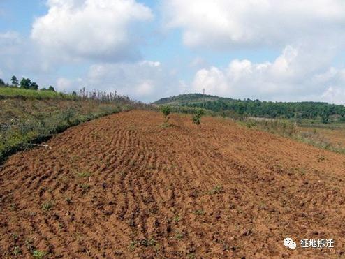 征用农村集体土地的特征及程序