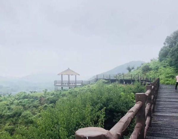 中式别墅800平米的花园!原乡小镇为什么这么受欢迎?环境怎样