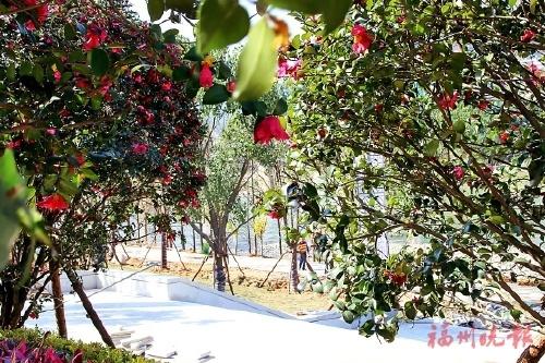 永泰小汤山生态公园春节前迎
