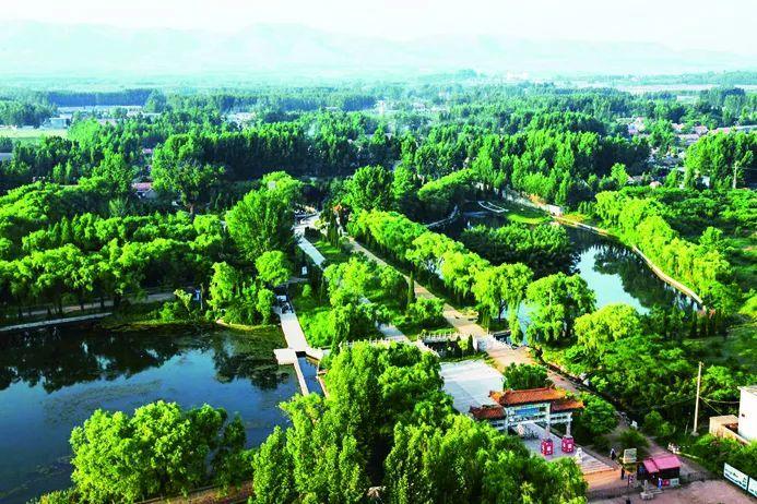 无山不披绿无城不盈绿!今年济宁计划创建10个市级以上森林乡镇