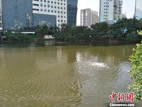 海南64个重点城镇内河(湖)污染水体年底前须达标