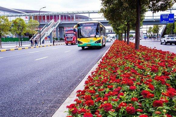 【进博会在线】上海青浦区累计完成进博会保障项目66个 总投资50.19亿元