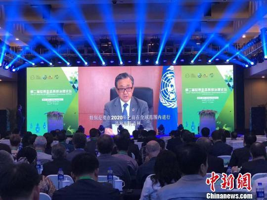 第二届世界生态系统治理论坛举行 搭建治理经验交流平台