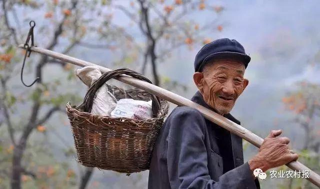 农民注意!国庆节后,这3项补贴直补到户,村干部无权经手!