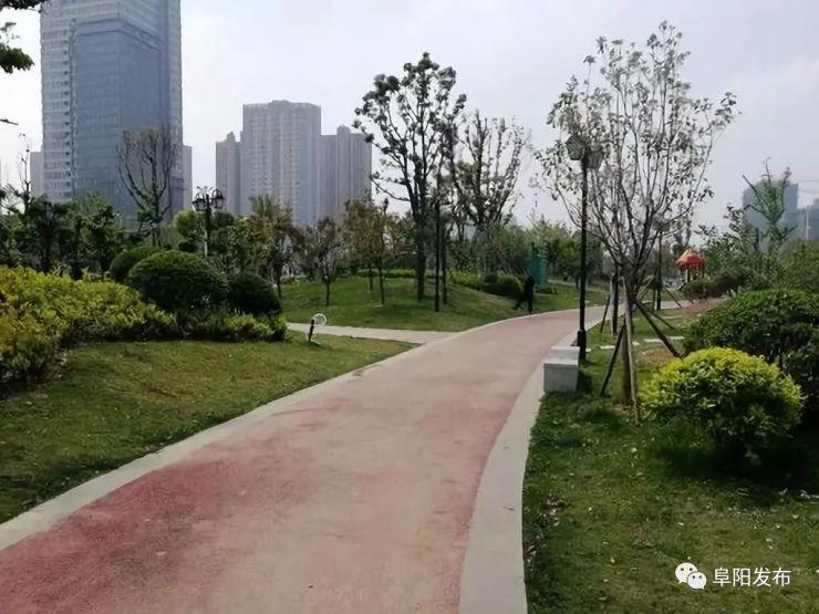 阜城这座生态湿地公园完工!市民们又多一休闲胜地