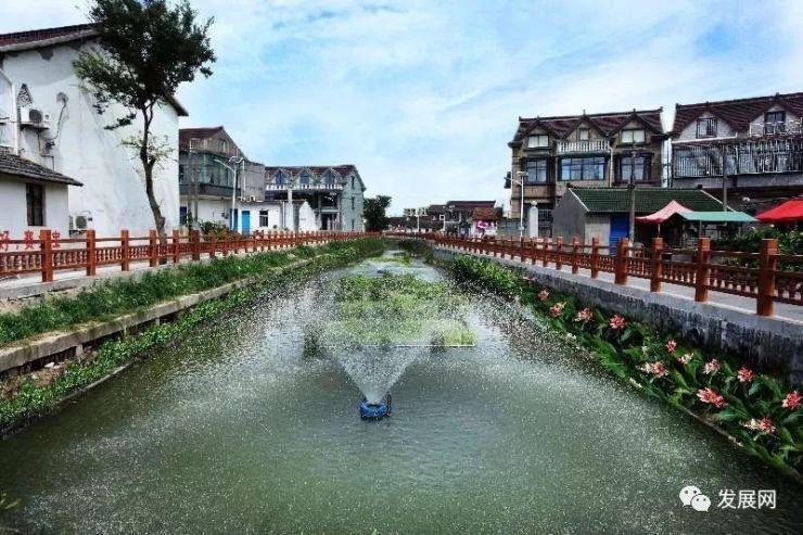 上海奉贤:让河更靓 水更清 岸更绿