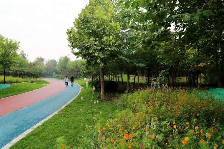 邯郸植物园开园了!